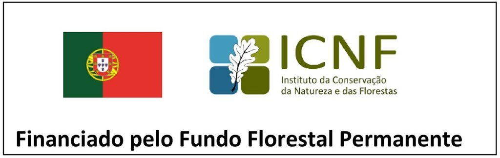 financiado pelo fundo florestal permanente