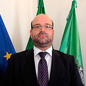 Hugo André Afonso Alves e Silva