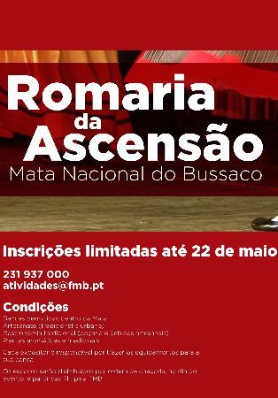 Dia do Munic�pio e Romaria da Ascens�o