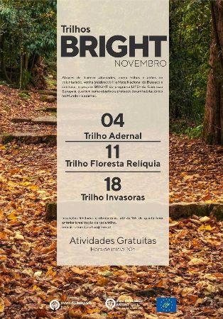 Oficinas Bright - Trilho Invasoras