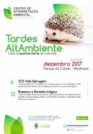 Tardes AltAmbiente - 13 dezembro