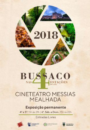 Bussaco nas 4 estações do ano - a fauna e a flora