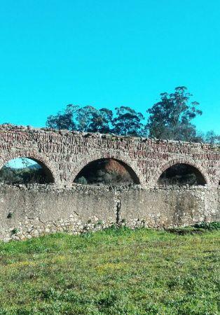 Passeio - Biotrilho por terras de Pampilhos