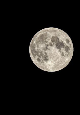 Bussaco ao Luar