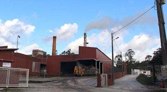 Tribunal manda encerrar fábrica de Azeite Alcides Branco