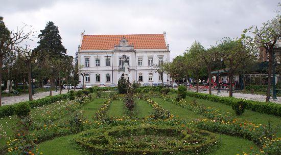 Jardim Municipal da Mealhada transformado em oficina de bem-estar e saúde