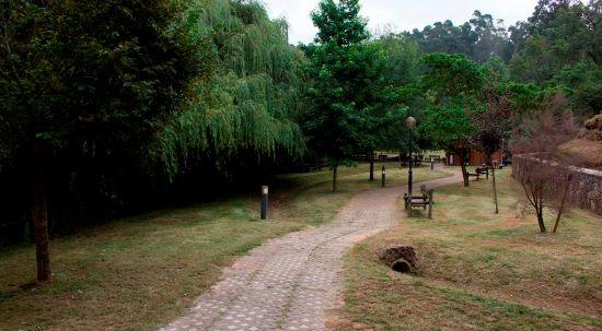 Prossegue limpeza de espaços verdes do Município