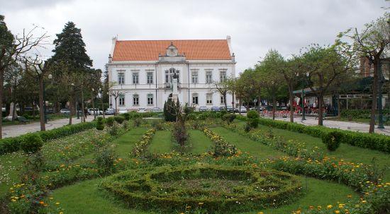 Autarquia aprova 83 mil euros de apoios para associações culturais e juvenis do município
