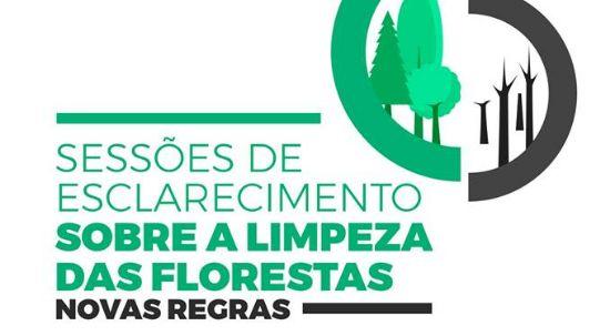 Limpeza de Florestas - sessões de esclarecimento