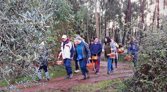 Bio Festival de Outono contou com mais de uma centena de participantes