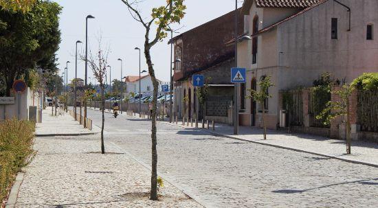 Condicionamentos de trânsito no centro da Mealhada