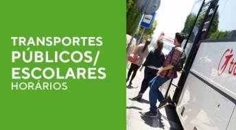 Ver Transportes públicos/ Escolares - Horários