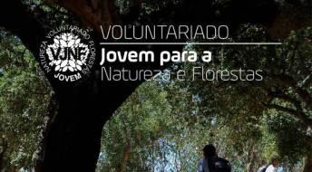 Ver Voluntariado Jovem para a Natureza e Florestas - Candidaturas