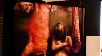 Ver Formação - Combate ao tráfico humano