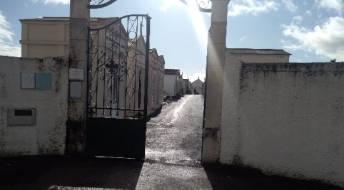 Ver Cemitério da Mealhada - restrições inerentes à Covid-19