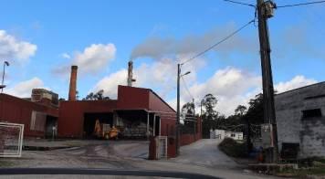 Câmara pede ao tribunal execução efetiva da ordem de encerramento da fábrica de azeite