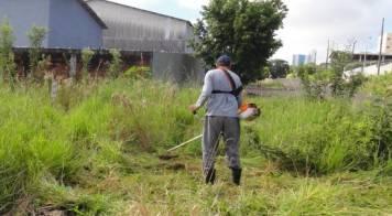 Mealhada sensibiliza para limpeza de terrenos