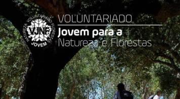 Voluntariado Jovem para a Natureza e Florestas - Candidaturas