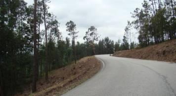 Mealhada concluiu trabalhos de faixas de gestão de combustível