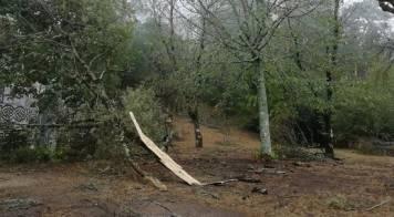 Levantamento de danos agrícolas e piscícolas provocados pela tempestade Leslie