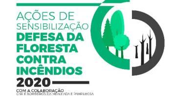 Ações de sensibilização de limpeza da floresta