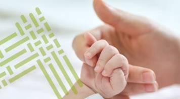 Programa de apoio à natalidade e economia já atingiu 156 mil euros de apoios às famílias