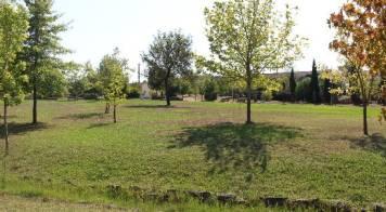 Câmara investe mais de 120 mil euros para requalificar Jardim Público da Pampilhosa