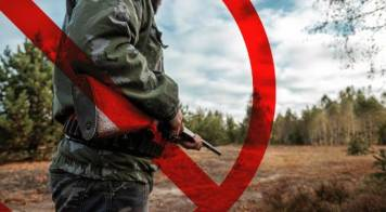 Proibido caçar